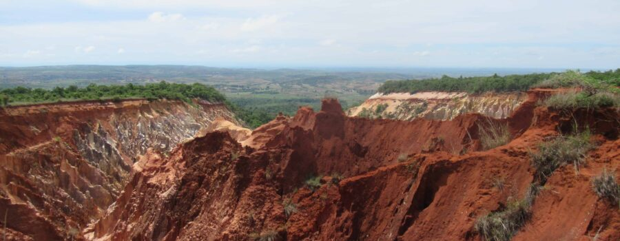 Visiting National Parks in Madagascar on a Budget
